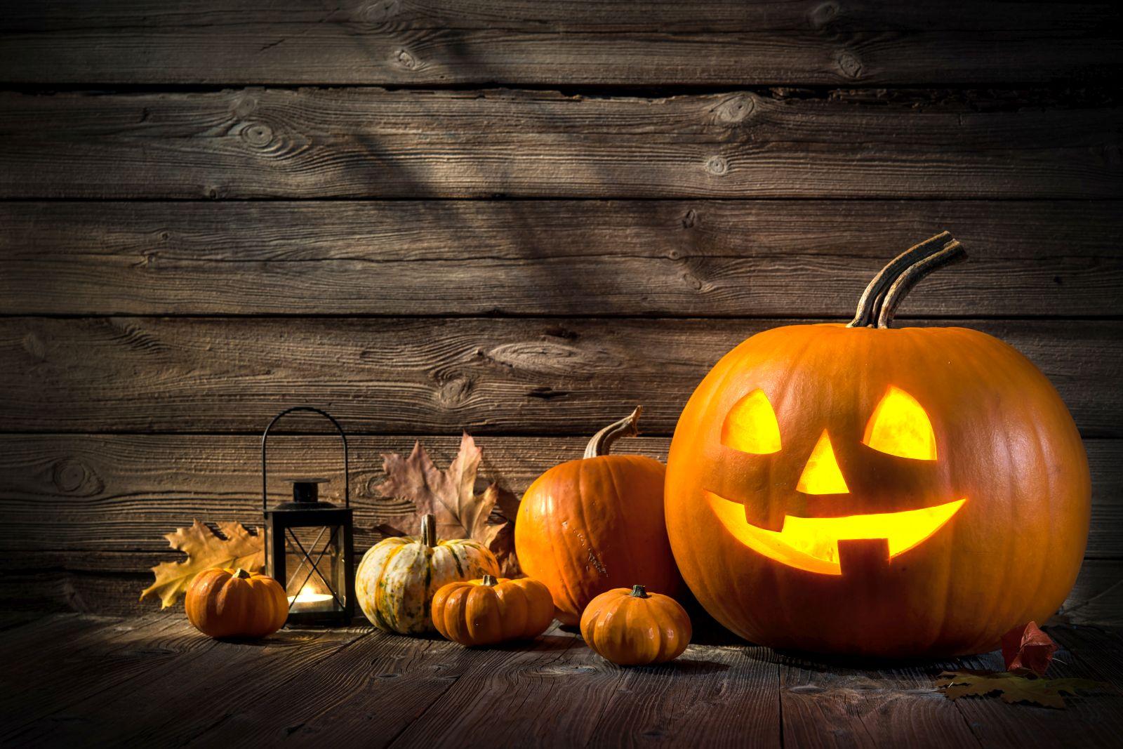 Halloween und Kürbisse gehören einfach zusammen - und das nicht nur in den USA.
