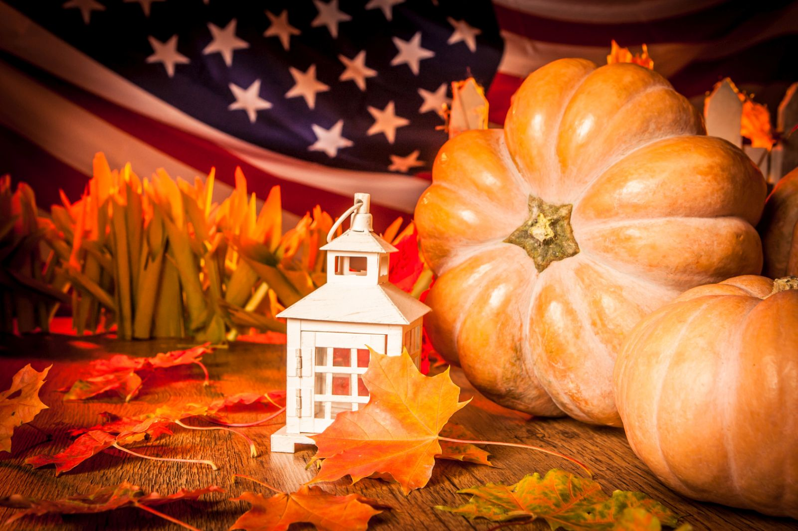 Halloween USA hours and Halloween USA locations along with phone number and map with driving directions/5(4).