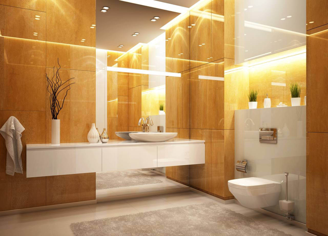 toiletten ein tabu thema in den usa. Black Bedroom Furniture Sets. Home Design Ideas