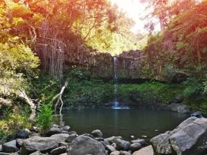 Die Natur der Inselgruppe Hawaii überzeugt durch ihre idyllische Schönheit.