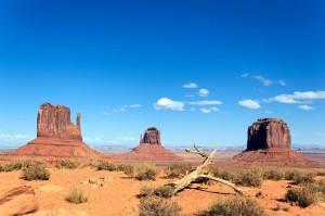 Die südlichen Wüstenregionen Arizonas sind im Sommer heiß und trocken, die Temperaturen erreichen bis zu 40 Grad Celsius.