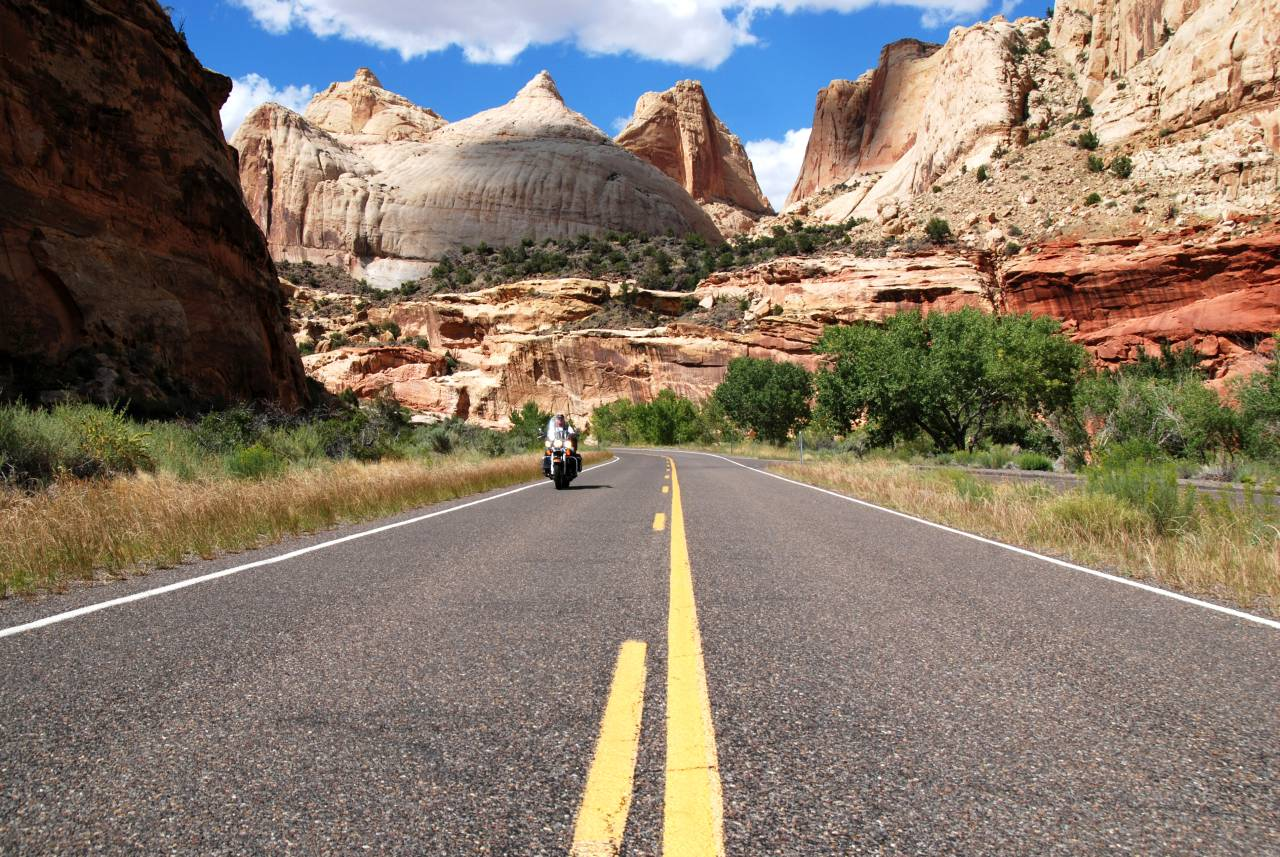 Wyoming Tours Usa