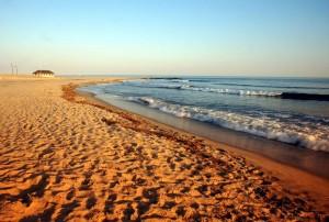 Cape May ist eine Touristenhochburg New Jerseys. Rund 5.000 Einwohner hat der Ort – im Sommer kann die Zahl auf circa 100.000 anwachsen.
