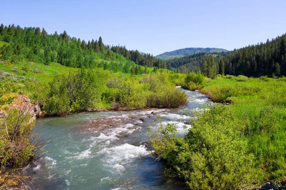 Eine typische Landschaft des US-Bundesstaates Idaho: Natur wohin man sieht.