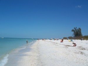 Der vierte Florida-Strand im Bunde, der die Top 10 der Rangliste von Dr. Beach erreichte, ist der Delnor-Wiggins Pass State Park. Foto: By Ebyabe (Own work) [CC BY-SA 3.0 (http://creativecommons.org/licenses/by-sa/3.0)], via Wikimedia Commons