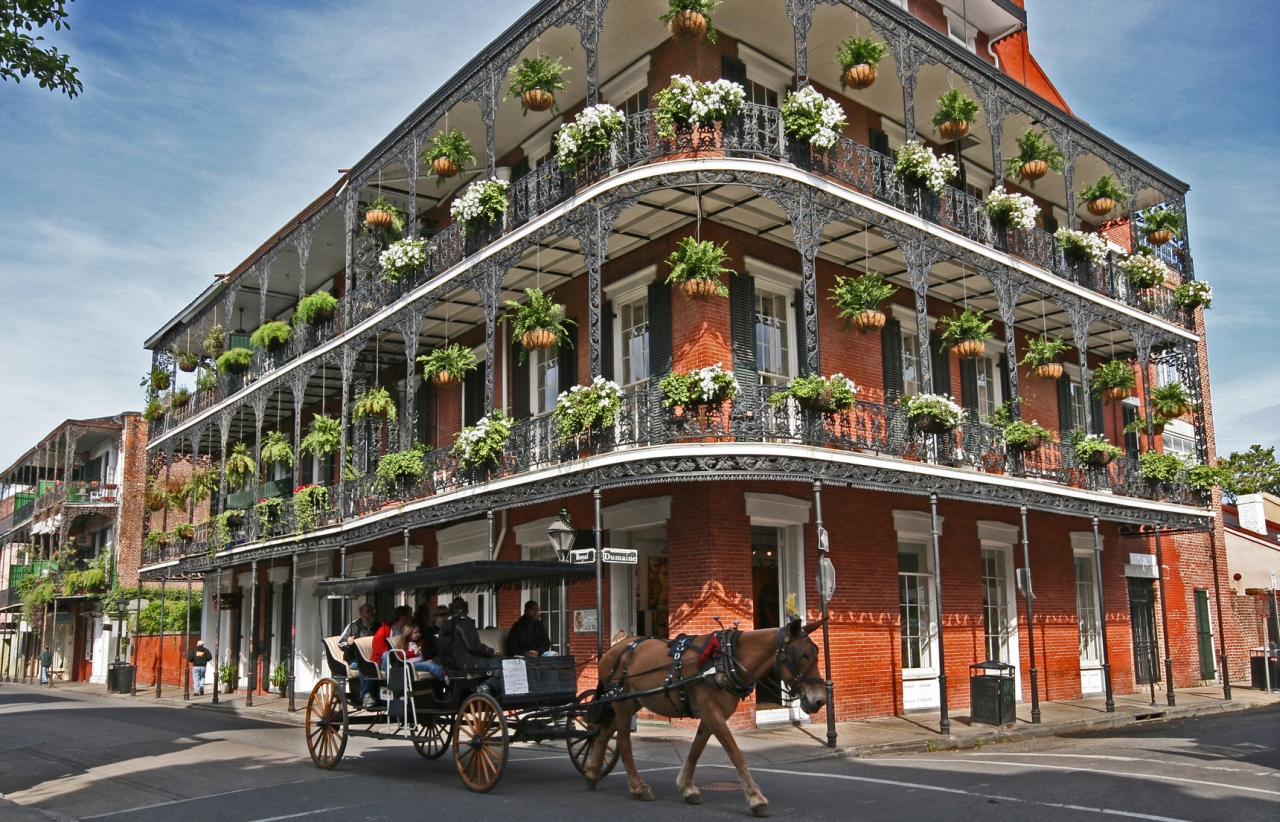 the french quarter of new orleans Restaurants in the french quarter range from formal to casual and offer truly unique flavors and famous new orleans cocktails you cannot walk too far in the french quarter without running into another restaurant.
