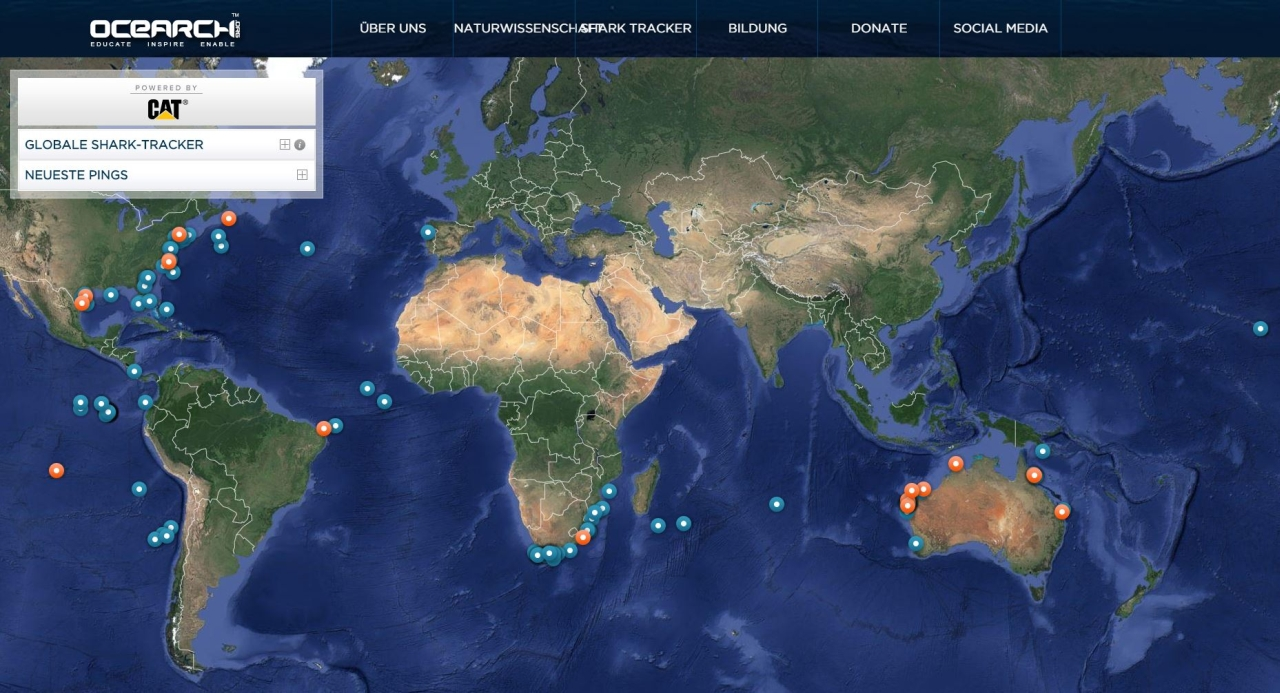Haie In Den Usa Das Mussen Urlauber Wissen