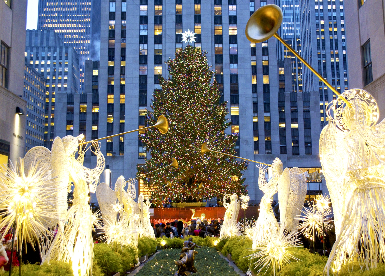 new york weihnachtsbaum am rockefeller center leuchtet. Black Bedroom Furniture Sets. Home Design Ideas