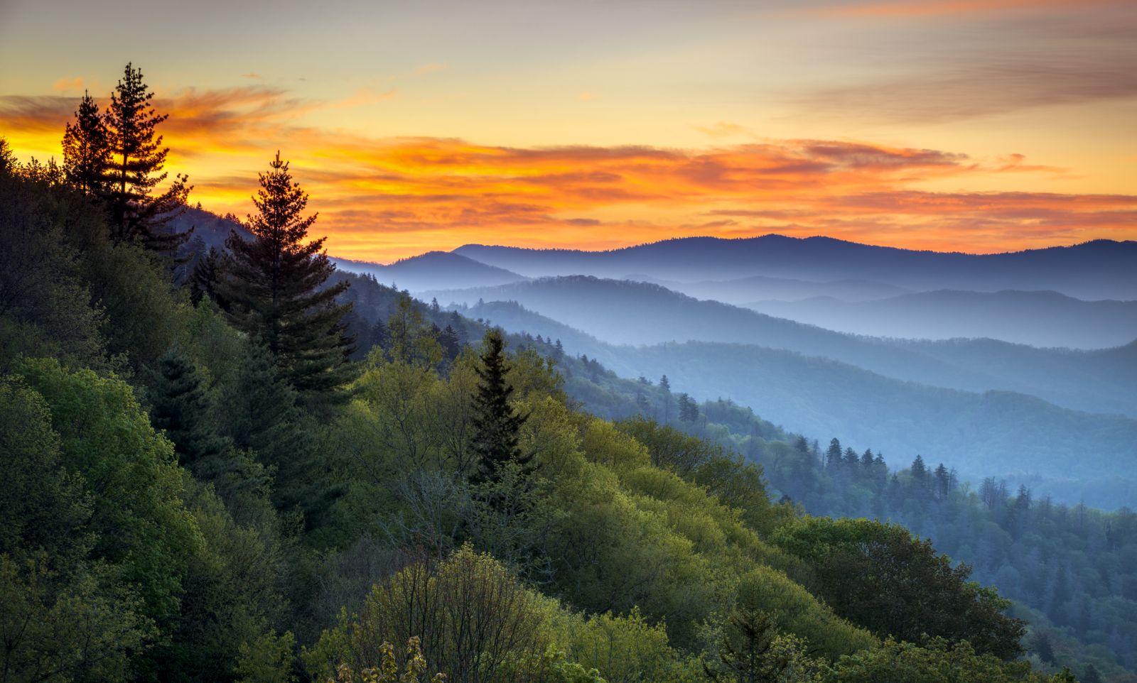 Der Great-Smoky-Mountains-Nationalpark ist der meistbesuchte Nationalpark der Vereinigten Staaten. Und das kommt nicht von ungefähr.