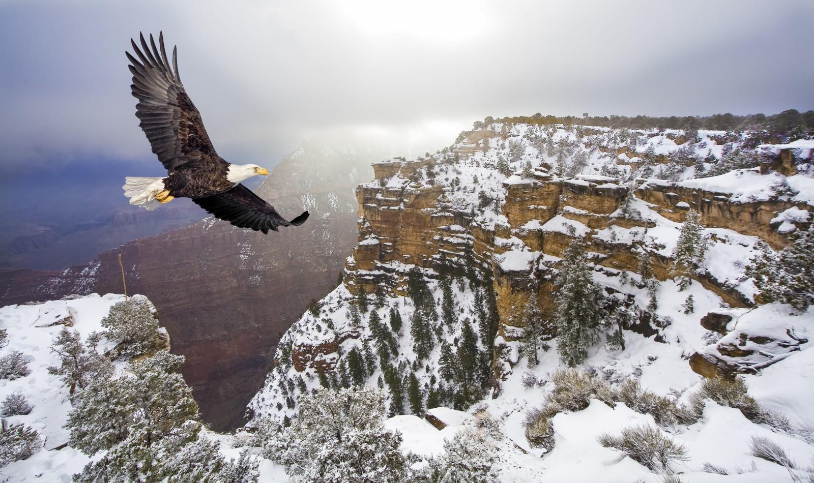 Wer Wunder sucht, der kommt in den USA an den Nationalparks kaum vorbei. Eine Tatsache, die viele Menschen anlockt. 2016 und 2017 waren es 331 Millionen.