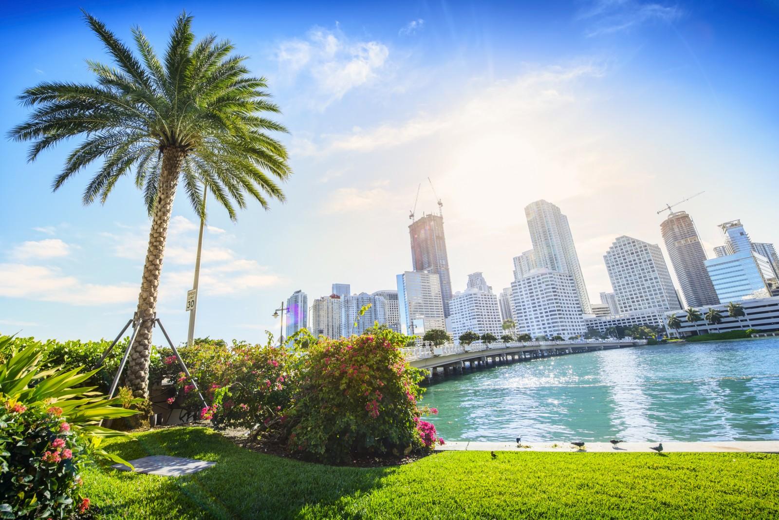 Ein Ziel an der Ostküste der USA und ein Garant für Strandfeeling ist Miami. Doch die Stadt in Florida hat auch für Kulturinteressierte viel zu bieten.