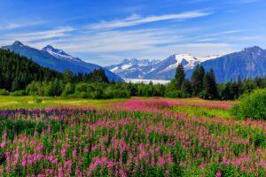 Alaska ist der flächenmäßig größte Bundesstaat der USA.